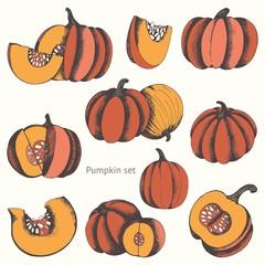 Pumpkins. Vector set of hand drawn illustrations for design
