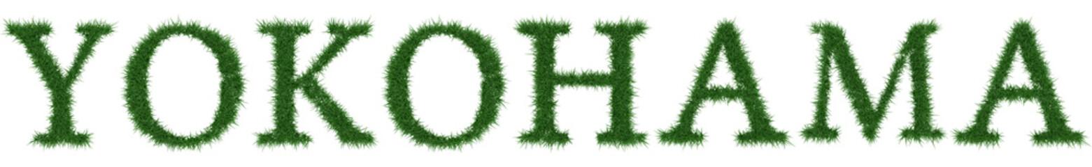Yokohama - 3D rendering fresh Grass letters isolated on whhite background.