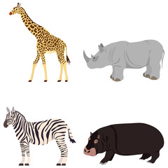 Giraffe, rhinoceros, zebra, hippopotamus. Animals of Africa.