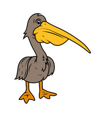 Pelican Bird  - vector clip-art illustration