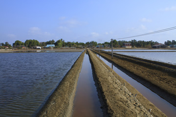 Salt farming Industries
