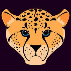 Cheetah icon, vector