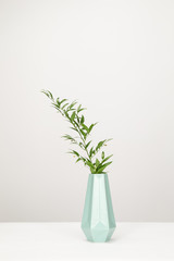 Turquoise vase with a green plant