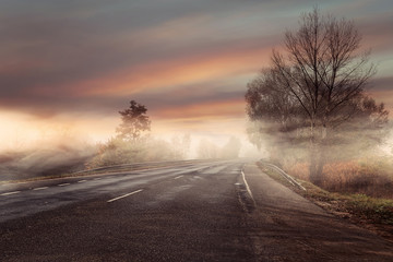 In de dag Zalm Idyllic and colorful view of the foggy autumn road