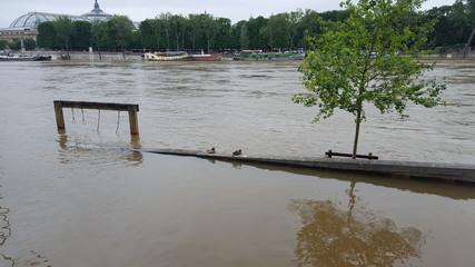 Inondations Paris Seine