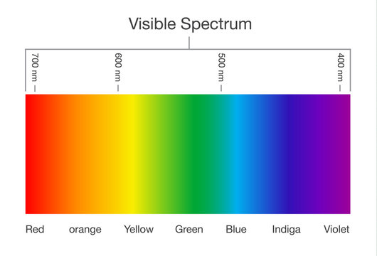 Chart of Visible spectrum color. Illustration about Human vision and light.