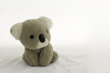 Koala bear doll sitting on white background.