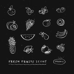 Illustration set of hand drawn fruits. Fruit icons.
