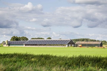 Modern open Dutch farm