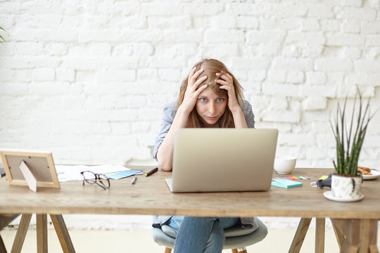 Indoor shot of frustrated female graduate student in casual clothes keeping hands on head, feeling panic and stressed out while working on diploma project, facing deadline, using laptop computer