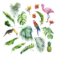 Watercolor illustration of tropical leaves,flamingo bird and pineapple. Toucan and scarlet macaw parrot.Strelitzia reginae flower. Hand painted. Banner with tropic summertime motif. Palm leaves.