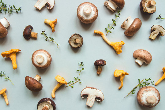 Fresh mixed forest mushrooms on the blue background, top view