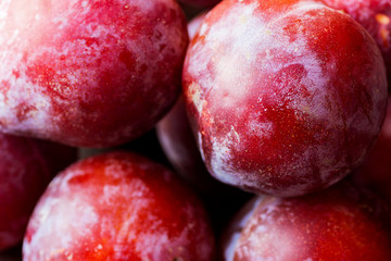 Heap of Ripe Juicy Vibrant Red Big Plums. Autumn Fall Harvest. macro. Wallpaper Poster Template.