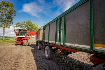 Fototapete - Kartoffelernte - Kartoffelroder und Transportanhänger auf dem Feld