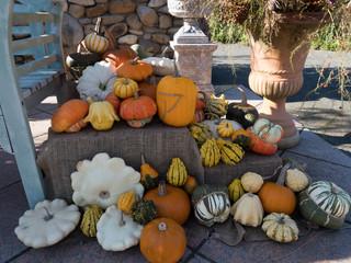 秋の収穫祭 #1