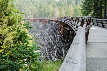 A sweeping view of Kinsol Trestle, high above the Koksilah River