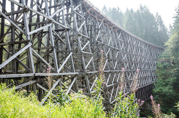 Kinsol Trestle support bracing and woodwork