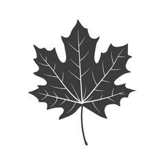 Autumn leaf. Vector.