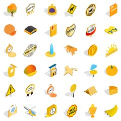 Summer icons set, isometric style