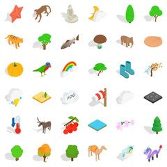 Forest icons set, isometric style