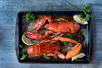 two cooked red lobsters with butter, lemons, parsley top view