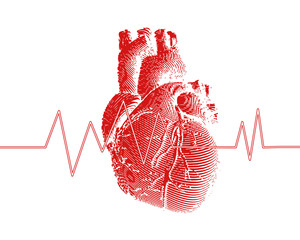 Red human heart with heart rate graph illustration