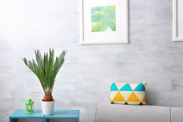 Sago palm and framed picture of tropical leaves near couch in living room