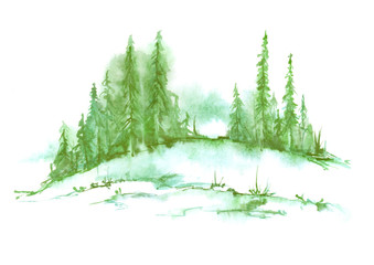 Watercolor landscape, picture. Picture of a pine forest, a green silhouette of trees and bushes on a white isolated background.