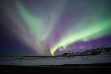 northern lights appear over sky in winter.