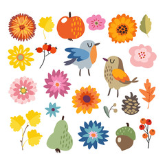 Set of cute hand-drawn autumn, fall elements. Birds and various flowers, fruit and leaves collection. Isolated vector illustrations, objects. Flat design.