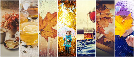 Collage of children and autumn. Selective focus.