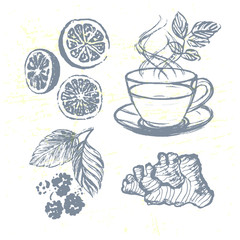Ink hand drawn Tea elements collection with Ginger, Raspberries and Lemons