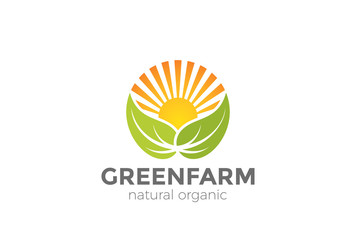 Green Natural Organic Farm Logo vector. Sun Leaves circle icon