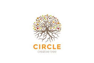 Circle Tree Roots Logo vector. Garden Natural Eco Organic icon