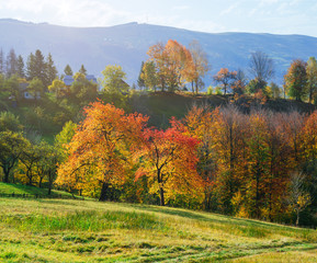 Autumn on the mountain hills in the village
