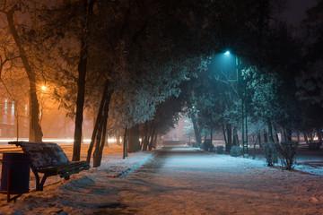 Night Landscape of Winter Park in Bishkek Kyrgyzstan