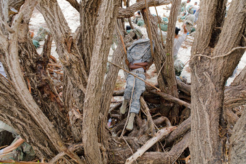 A soldier from the Army's 602nd Area Support Medical Company rests on a limb of a tree damaged by Hurricane Irma in Charlotte Amalie