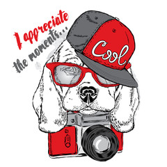 Cute puppy in a cap and with a camera. Vector illustration for card or poster, print on clothes. Pedigree dog. Beagle.