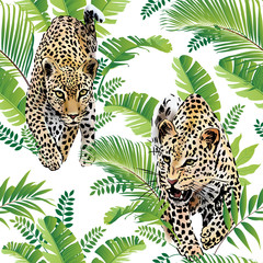 Leopards palm leaves tropical watercolor in the jungle seamless background