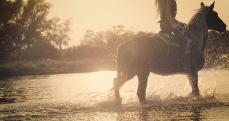 Wall Mural - Slow motion 240fps shot of cowboy girl riding horse in water of sunset river