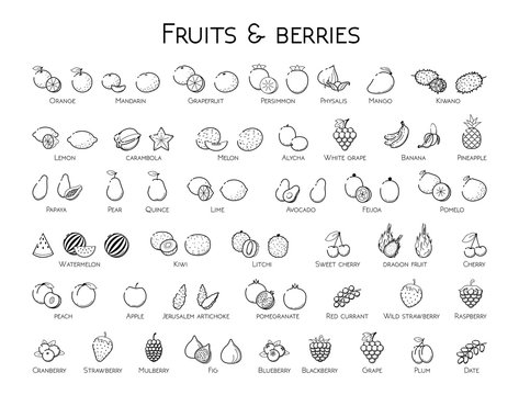 Outline black linear web icon set - Fruit & berries Thin bold Line food Icons For logo, label Orange banana melon apple, blueberry, pineapple pomelo, kiwi peach, fig kiwi, tropical collection on white
