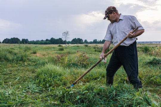 Mature farmer mows the grass with old scythe on meadow