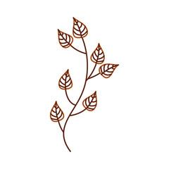 autumn tree branch leaves foliage botanical image vector illustration