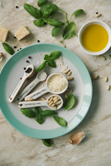 Ingredients of pesto