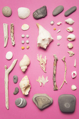 Collection from the sea shore...