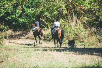 Two young women riding horses in nature with dogs