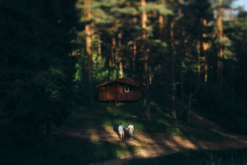 Young couple together in the spotlight in the forest