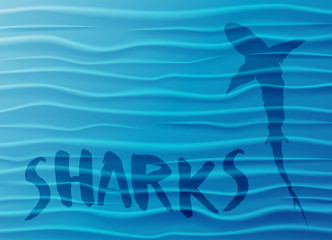 Shark silhouette in the deep sea. Blue water waves background with shark, sample text and copy-space. Vector Illustration.