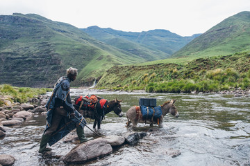 Basotho herdsman guiding his pack donkeys across a river in Lesotho