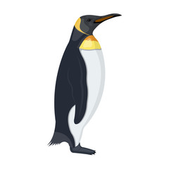 Penguin, flightless sea bird. The Imperial Penguin single icon in cartoon style vector symbol stock illustration web.